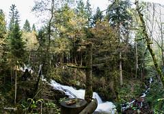 Saut du Bouchot (ZeGaby) Tags: panorama nature pentax cascades vosges longexposuretime k30 sautdubouchot