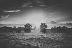 218 (42zx) Tags: uk sunset white black canon landscape 365 35l 5d2