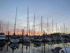 Haslar Marina (DaveLevy) Tags: cruise solent yachting haslar 2013