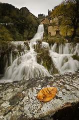 Autumn at the waterfall ( Mario Gutirrez Photographer) Tags: november autumn brown water river waterfall leaf spain village