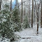 Golden Eagle Trail (Full Hike) (5) thumbnail