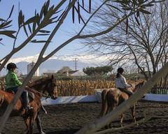 Riding lessons (Micheo) Tags: horses kids children caballos spain silo paseo riding granada sierranevada