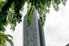Singapore (Edi Bhler) Tags: sky plant building tree clouds pflanze himmel wolken structure highrise bauwerk baum gebude hochhaus 28300mmf3556 nikond800