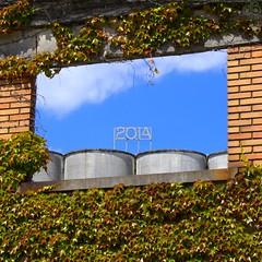 2014 (c-dr-c) Tags: window open bordeaux wishes fenêtre voeux ouvrir