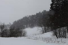 It looks like Norway (Marthinefoto) Tags: winter snow norway canon landscape eos scandinavia natuer 5dmarkii