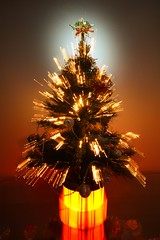 Christmas Tree (Adi Tamtomo) Tags: christmas star december christmastree holidayseason christmaslight flickrandroidapp:filter=none