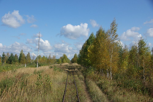 Gus-Khrustalnyi narrow gauge railway _20090926_046