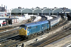 84 162 090984 31434 Hull (The KDH archive) Tags: railway 1984 hull class31 31258 31434 d5686