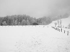 On a hillside desolate (Colour Blind Bob) Tags: camera winter mountain snow farmhouse blackwhite nikon hill scene coolpix p330 colourblindbob