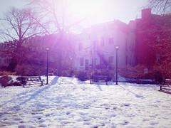 Sunday morning (ekelly80) Tags: park morning winter sun sunlight snow washingtondc morninglight dc dupontcircle winterinthecity winterindc february2014