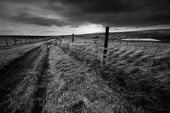 Blowing in the WInd (andy_AHG) Tags: rural sunrise outdoors yorkshire earlymorning moors badweather pennines britishcountryside saddleworth northernengland beautifullandscapes standedge millstoneedge marsdenmoor thepennineway northernrotcher
