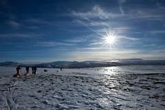 Cross Country Skiing (betusmaximus) Tags: winter sun iceland frost skiing b2 sar b1 2014 fbsr crosscountryskiiing gönguskíði gönguskíðaferð flugbjörgunarsveitiníreykjavík flugbjörgunarsveit