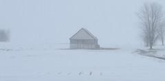 DSC_6117a (Fransois) Tags: grange champ neige blanc barn snow white field rougemont qc monochrome hiver winter winterstorm tempête québec