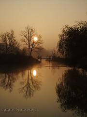 un pont vers Toi (alain.beauvois62) Tags: lac brume matin armagnac gers