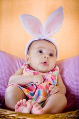 Beatriz (anavaleriobh) Tags: linda newborn bebê criança pascoa fofa pézinho coelhinha cestinho orelhinhadecoelho