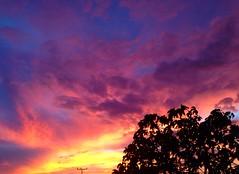 Sky like a orchid. (Maitane Basoa.) Tags: pink blue sunset sky sun yellow night clouds landscape three colorful purple bluesky pinksky lateafternoon purplesky colorfulsky skyporn