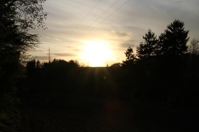 Solnedgang i Sortebakkeskoven, Nørager