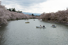 (GenJapan1986) Tags: travel japan spring aomori   cherryblossoms  58mm 2014      nikond600
