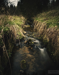 (desomnis) Tags: longexposure nature water creek river austria österreich rocks stream natural bokeh stones sigma le 20mm f18 oberösterreich 6d longexposuretime longtimeexposure drygrass upperaustria ndfilter mühlviertel sigma20mm oldgrass nd1000 canon6d sigma20mmf18exdgrf canoneos6d desomnis