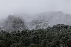 Nevando en Sierra de Grazalema, Cdiz / Snowing in Mountains if Cadiz (Jos Rambaud) Tags: winter snow clouds andaluca nieve snowstorm nubes invierno snowing cdiz sierradegrazalema parquenaturaldelasierradegrazalema