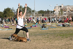 """Yoga GWR-CD-012515 (279) • <a style=""""font-size:0.8em;"""" href=""""http://www.flickr.com/photos/25952605@N03/16350245526/"""" target=""""_blank"""">View on Flickr</a>"""