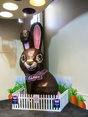One Big Bunny (Jocey K) Tags: newzealand bunny display southisland otago dunedin tripdownsouth cadburyworlddunedin