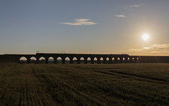 Viaduct at sunrise (EltonRoad) Tags: greatbritain silhouette train sunrise dawn scotland scottish 9 railway class steam line viaduct gb westcoast ratho ix blackfive 44871 almondvalley railwaytouringcompany