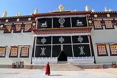 Monk (Qiche) Tags: china travel people building rural walking religious buddhist chinese buddhism shangrila tibetan symbols yunnan cultural ganden zhongdian diqing songzanlin sumtseling perspn