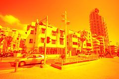 IMG_4502 (Michael Simberg) Tags: israel tel aviv jaffa  tlv yaffo