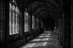The Cloister (Gareth Wyn Lloyd Photography) Tags: city spring chester cloister romans sunnyday chestercathedral castlewalls
