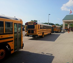 A line of School Buses at my High School. (Brady Backhoff) Tags: handy bluebird msa 3800 icre cumminsisb wheelchairbus thomassaftlinerc2 dt466e icbus manateeschoolforthearts floridaschoolbus manateecountyschoolbus