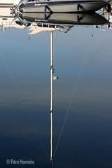 kuvajainen (Paivi Hannele) Tags: blue sea reflection nature animals finland landscape boat meri naantali canonphoto thisisfinland visitfinland ourfinland