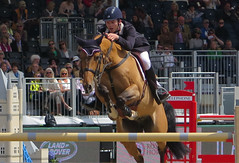 Intense! (Ann of Bere) Tags: show horse jumping royal windsor