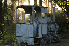 Locomotiva (rodengelet) Tags: nature nikon flickr natureza sigma trens fotografo americadosul locomotiva brasilbrazil fotografemelhor fotografosbrasileiros naturezaobradedeus atravsdaminhalente d7000 flickrglobal brasilemimagens rodrigovasconcellossilvarvs lens55300nikkor