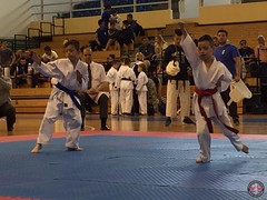 stefanou_15_5_2016_knockdown_110