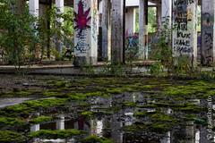 Natur vs. Gebäude