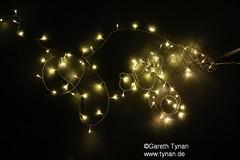 s160510_0012+_ArtPeople_Brigi_LightFlowers (gareth.tynan) Tags: experiment prototype luminale lightflowers artpeoplelangen brigittegrausamtynan