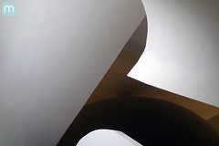 Museu do Amanh no Rio de Janeiro (marcelo nacinovic) Tags: museu museum museudoamanh santiagocalatrava calatrava architecture arquitetura architektur arhitektura arquitectura art riodejaneiro reveillon rio rio2016 rioolympics olimpadas olympicgames olimpadas2016 olympics2016 vlt detail marcelonacinovic nacinovic sony rx100 brasil brazil brasilien brazilian bresilien brsil praamau piermau cais porto tomorrow olympics 50 paralympic paralympics games foratemer
