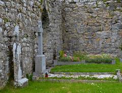 Corcomroe Abbey III (N. S. Gittings) Tags: ireland countyclare corcomroeabbey tamron18270mm nikond7000