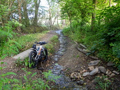 IMG_4895 (Photopedaler) Tags: trees bicycle rural countryside streams bridleways fatbike cornishcycling