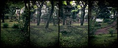 History and Back (lesliegill) Tags: park trees panorama colour green japan outdoors tokyo urbanexploration quadtych iphone 2016 iphoneography
