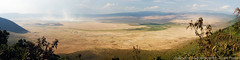 This panoramic can't do justice to the caldera which stretches 12 miles across, and is 2000 feet from floor to rim (3scapePhotos) Tags: 2000 africa tanzania across caldera continent crater feet floor justice miles ngorongoro ngorongorocrater panorama panoramic rim safari stretches wideangle