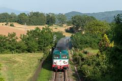 D445 1116 (Samuele Poli - SierraAlpha photos) Tags: bridge san diesel ponte lorenzo firenze borgo mugello vicchio 1116 d445