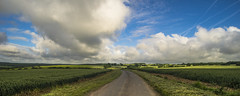 Road to Rudge ... June (HHH Honey) Tags: road summer sunshine clouds landscape shadows sigma crops wiltshire cloudscape rudge froxfield sigma1735mmlens theroadtorudge 12monthsofthesameimage sonya7rii