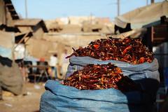 Asmara /  (Eritrea) - Medeber Market (Danielzolli) Tags: pepper stand market stall mercado souk bazaar markt mercato march peperoncini paprika trg souq bazar redpepper targ basar trh rynek asmara eritrea suk berbere suq peperoni habesha targowisko rynok erythre asmera   berebere bozor medeber  ertra erythrea eritra trziste