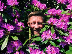 Pretty in pink (again) (StartTheDay) Tags: pink flowers light summer portrait plant man flower color colour me face self catchycolors beard fun colorful bright northumberland northumbria rhododendron colourful nationaltrust bearded cerise hombre mec cragside colorsoftheworld cragsideestate