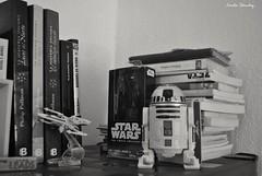 Algunos libros en blanco y negro (spawn5555) Tags: home book casa nikon library cotidiano libro books libri biblioteca libros d3000
