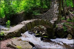 Limehouse Conservation Area (robinkrumins) Tags: escarpment hike trail brucetrail mossy rocks ontario conservationarea countryside limekiln