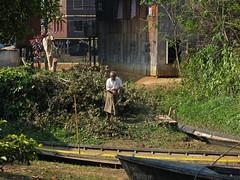 Man working on Inle Lake (rainy city) Tags: lake canoes myanmar inlelake inle