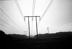 Electric fields (gborgskij) Tags: electric analog iso100 riva minolta mini 11 d76 fields agfa apx 12min kttilsrd